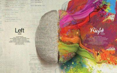 Sono il cervello
